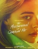 The Miseducation of Cameron Post 2018 online subtitrat