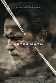 Aftermath (2017) Online Subtitrat